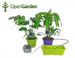 Ukázka použití projektu Open Garden na květinách