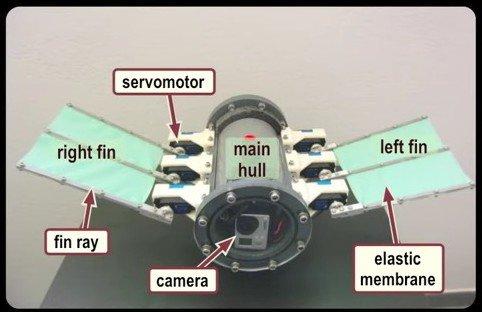 UnderwaterRobot2-e1448405874457