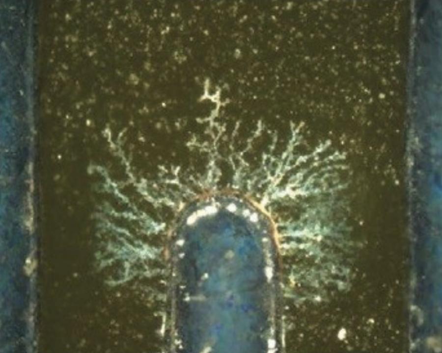Dendrity